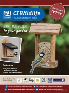 Free tips & advice to attract more wildlife to your garden