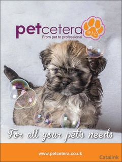The Best Petcare and Grooming products for your dog
